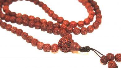 Photo of Rudraksha11 Mukhi
