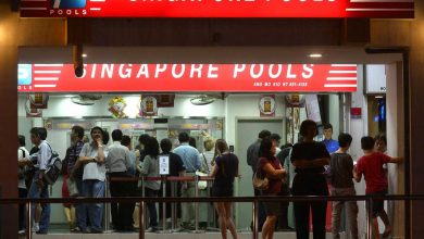 Photo of Singapore pools opening odds – A new trend of legal betting